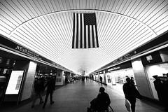 Penn Station, New York (iecharleton) Tags: pennstation newyork newyorkcity architecture ceiling flag symmetry trainstation converginglines monochrome blackandwhite subway