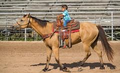 20170506_Sheriffs_Posse_Arena_DP_021 (teakdetour) Tags: barrel cowboy horse ranch rodeo vaquero