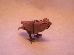 Origami Finch (edg82) Tags: bird paper fold origami crumpled perching brown white papercraft momi handmade