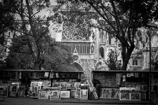 Bouquinistes à Notre Dame