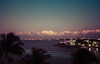 (Liza Williams) Tags: windblownpalmtrees windblown palmtrees cloudsovertheocean clouds evening colorful northbayvillage streaksoflight longexposure bayview view ocean bay lighttrails travelphotography miami