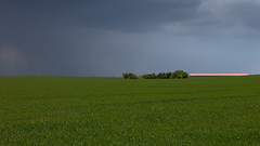 Before the Rain (panfot_O (Bernd Walz)) Tags: field fields agriculture rural countryside farmland minimal minimalism fineart rain transformedlandscape artificiellandscape emptiness green brandenburg germany
