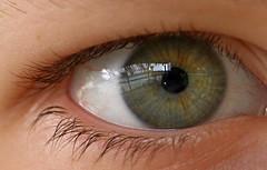 Hello Neighbor :) - Eye(s) (superhic) Tags: macromondays eye eyes neighbour macro monday