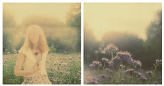 twilight (l'imagerie poétique) Tags: limageriepoétique poeticimagery diptych impossibleproject polaroidsx70 photomontage twilight quandlanuitcommenceàtomber