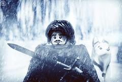 Jon Snow (Jezbags) Tags: lego legos toys toy minifigure minifigures macro macrophotography macrodreams macrolego canon60d canon 60d 100mm closeup upclose gameofthrones thones jon snow wolf got white