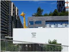 A giraffe is looking at ... (michelle@c) Tags: urban suburban architecture contemporan cityscape 2ndfloor nursery giraffe building offices tower horizons terrace vegetation concrete ateliersjeannouvel architect west trapeze boulognebillancourt 2017 michellecourteau