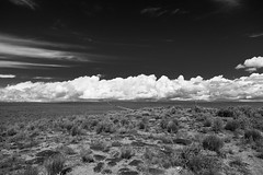 (el zopilote) Tags: 500 albuquerque newmexico westmesa landscape powerlines clouds canon eos 5dmarkii canonef24105mmf4lisusm canonites fullframe bw bn nb blancoynegro blackwhite noiretblanc digitalbw bndigital schwarzweiss monochrome