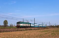 rolling (maurizio messa) Tags: rolling e655 caimano lombardia pavese nikond90 mau bahn ferrovia treni trains railway railroad