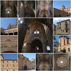 Spanish journey - Part XIV (Pedro Nuno Caetano) Tags: fdsflickrtoys spain españa salamanca journey mosaic