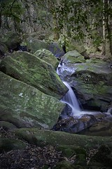BMLeura29 (Iksana Imagery) Tags: bluemountainsnationalpark leura waterfalls