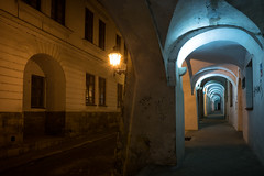 May 18, 2017.jpg (pavelkhurlapov) Tags: buildings lamps architecture arch passage night