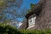 Reetdachhaus in Sieseby (dritterpinguin) Tags: sieseby fotosafari reetdachhaus 2017