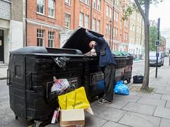 20170628T16-02-08Z-P6280664 (fitzrovialitter) Tags: fitzrovia geo:lat=5151871500 geo:lon=014019733 geotagged westendward england unitedkingdom gbr rubbishbin recyclingbin scavenger lifting lid peterfoster fitzrovialitter camden westminster rubbish litter dumping flytipping trash garbage london urban street environment streetphotography westend centrallondon documentary authenticstreet captureone littergram geosetter exiftool olympusem1markii mzuiko 1240mmpro