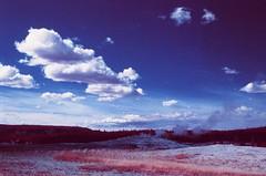 Yellowstone National Park (cris_that1) Tags: yellowstone national park infrachrome fpp film photography project aerochrome wyoming montana 35mm minolta srt101 old faithful