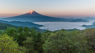 Fuji and sea of clouds
