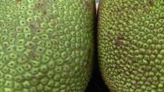(clascaris) Tags: trifle green fruit jackfruit