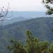 San Ignacio - Forest Covered Mountains