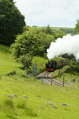 Steaming through Wales (gooey_lewy) Tags: vale rheidol railway vor steam narrow gauge train engine wales 2 ft feet 262t tank great western livery gwr british rail railways br green prince 9 1213 loco locomotive coal fired nice light picturesque pisgah staion tree arrival