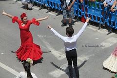 Día de San Isidro- Romería en Alameda.(Málaga) (lameato feliz) Tags: alameda romería fiesta baile