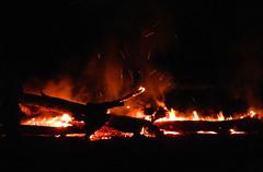 Last flames (LeelooDallas) Tags: western australia bannister landscape bush fire log light flame dana iwachow nikon s9200