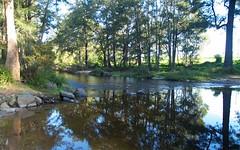 27 Little Glen Oaks Rd, Brogo NSW