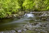 Tranquility (Carl Yeates) Tags: wales canon 550d betswycoed water river trees green canon550d