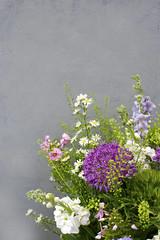 Spring purple and White Flowers (photoart33) Tags: flowers purple white stocks larkspur alliums dianthus stilllife spring