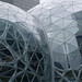 Amazon Bubble Center