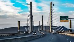 Golden Ears Bridge (Christie : Colour & Light Collection) Tags: goldenearsbridge eagles fraserriver spanning bc canada bridge toll tollbridge cablestayedbridge sky clouds