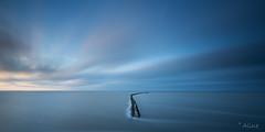 as wind goes by (Just me, Aline) Tags: 201705 alinevanweert holland nederland netherlands wierum le longexposure langesluitertijd nikkor1424 sw150bigstopper bigstopper sw9ndhg d800 omnifoto wadden wad sky sea zee dijk dike zonsondergang sunset minimalisme minimalism