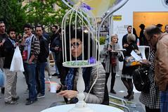 Alba, Italy, 2017 (Denis Marinello) Tags: people travel urban color vinum