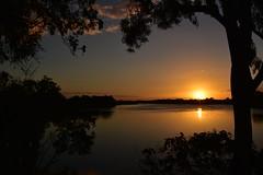 Flood tide (Images by Jeff - from the sea) Tags: sunset gumtrees sky mangrovetree bluesky bundaberg burnettriver trees twilight dusk water clouds nikon d7200 goldenhour goldensunset tamronsp2470mmf28divcusd topf25 nikonflickrtrophy 500v20f 7dwf 1000v40f