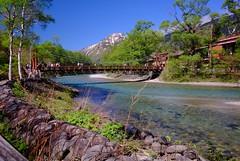 上高地河童橋(Japan) (linwujin) Tags: japan 上高地 河童橋 river riverside mountain nature landscape fujifilm xt1 xf1024 tree green blue sky