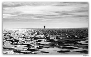Searching the horizon