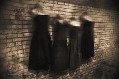 The Hanging (Steven Dempsey) Tags: monochrome fujifilm xt1 vintage texture moody creepy wollensak cine raptar