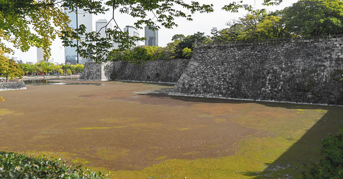 The Moat...