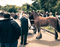 Wickham Horse Fair 2017 (Mike Turner) Tags: lifeguard tradition leicaqtyp116 pony roma travellingcommunity traditions culture countryside country wickhamfair romani horse ponyandtrap leicaq ponies gypsyroma leicaqtype116 horses cultural gypsies liveandletlive romany leica horseparade fair travellers gypsy wickhamsquare irishtravellers hampshire wickham wickhamhorsefair thesquare traditional