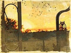 Sunrise (lindyginn) Tags: iphoto ipad finger painting art birds sunrise ethereal surreal watercolor dream desert landscape photography yellow light dark clouds orange beauty ginn mobile trees garden nature tan plants sky