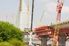DSC_5523 (fjaphotography.co.uk) Tags: wiggisland nature merseygateway bridge construction runcorn england unitedkingdom gb