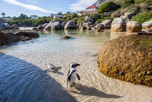 Kaapstad_BasvanOort-102