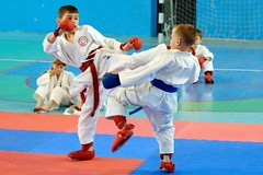 "pervenstvo-asbestovskogo-gorodskogo-okruga-po-karate-2017-9 • <a style=""font-size:0.8em;"" href=""http://www.flickr.com/photos/146591305@N08/34872047861/"" target=""_blank"">View on Flickr</a>"