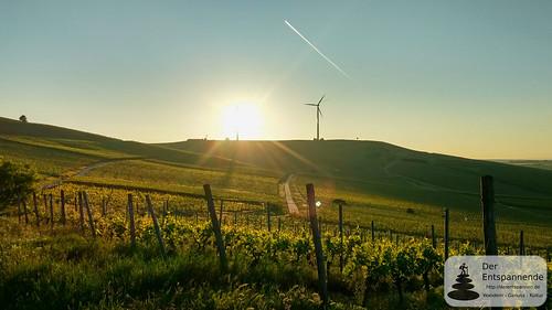 SunriseRun über dem Selztal am 26.05.2017