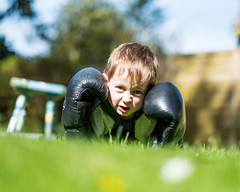 The Boxer - DSCF2009 (s0ulsurfing) Tags: s0ulsurfing 2017 march isle wight william boxer boxing garden boy play imagination fuji xseries xt2