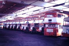 Stockport Depot (ee20213) Tags: greatermanchestertransport leylandtitan pd2 pd3 stockportdepot eastlancs bja911b mja897g 5811 bja917b bja916b 5897 end820d 5817 5816 3820 gmpte gmt 277 kja277f