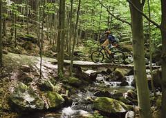 smooth (Hagbard_) Tags: bike mtb mountainbike trailbike ride enduro czech rychleby sport tour outdoor outside trailriding wood fun life friends beautiful mtbisokay nature photography rychlebskéstezky