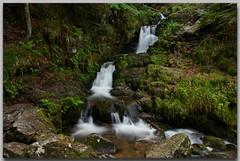 Cascade Charlemagne - Vosges (jamesreed68) Tags: retournemer nature chute 88 vosges lorraine forêt longemer xonrupt france charlemagne canon eos 600d