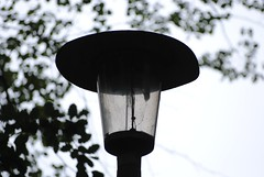 MUX1 (Callum's Buses & Stuff) Tags: lantern 35w street refractor 24edinburghcu sox refractorglasspoststreet lanternstreet singlerefractor edinburgh lothin