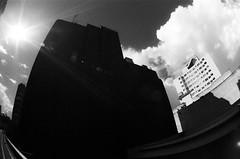#2410 - Minhocão, sp - Brasil (vintequatro10) Tags: street streetphotography streetphotographer streetphoto streetphography streetscape rua fotografiaderua fotografiadocumental arquitetura architecture sol sunshine prédio tower city cidade cityscape cityview pb b bw pretoebranco blackandwhite nuvens shadows sombra silhueta silhuet pentaxkm pentax pentaxk1000 kentmere400 iso400 50mm 50mmf14 35mmfilm film filme filmisnotdead