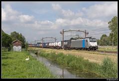 CT 186 296 - 43561 (Spoorpunt.nl) Tags: 3 juni 2017 captrain traxx 186 296 melzo shuttle trein 43561 dordrecht zuid container wagens