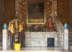 Wat Khunchan Wihan of the White Jade Monk Interior (DTHB2045) วัดขุนจันทร์ ด้านใน วิหารหลวงพ่อหยกขาว